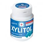 Lotte Xylitol Gum Sugar Free Fresh Mint Flavour 58 gr.